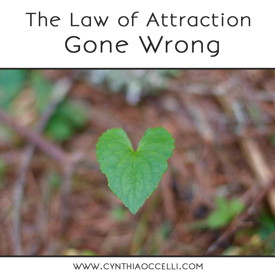the law of attraction gone wrong
