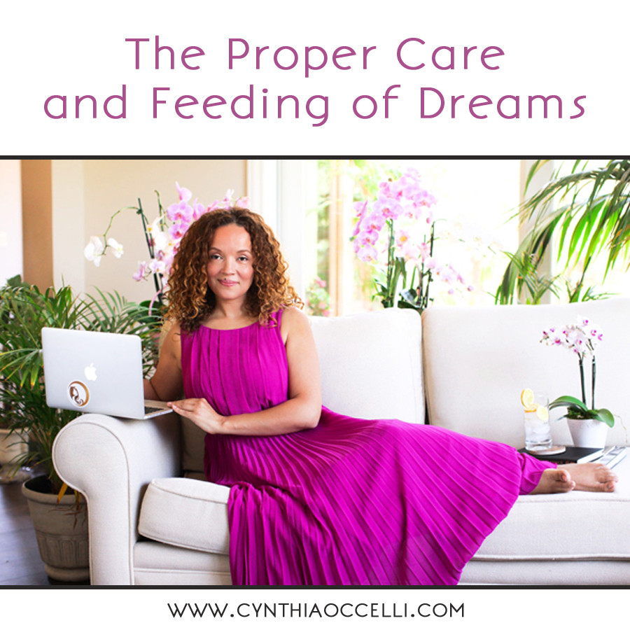 The Proper Care and Feeding of Dreams