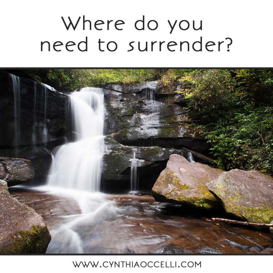 Where do you need to surrender?