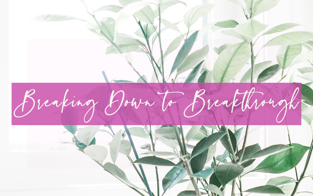 LIFE 083: Breaking Down to Breakthrough