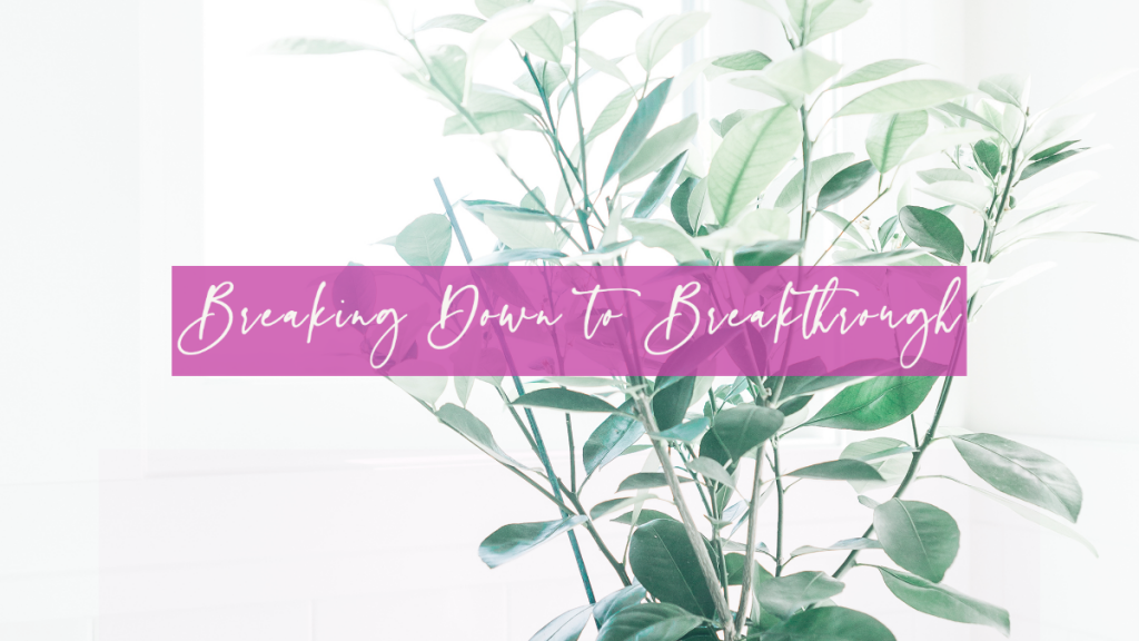 Life 82: Breaking Down to Breakthrough